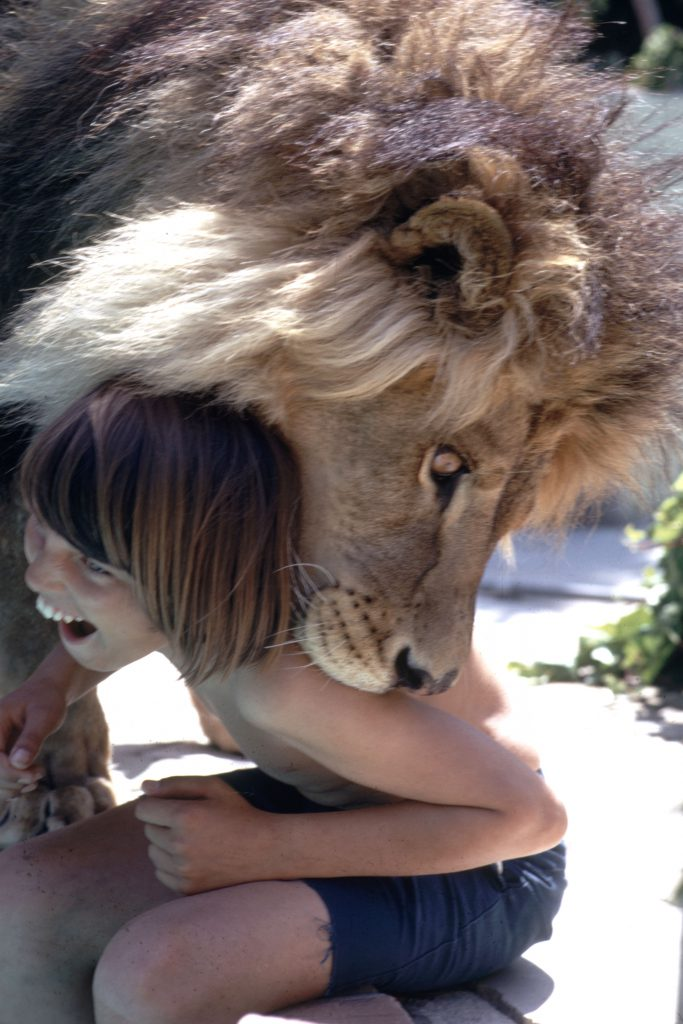 the kids playing with neil the lion
