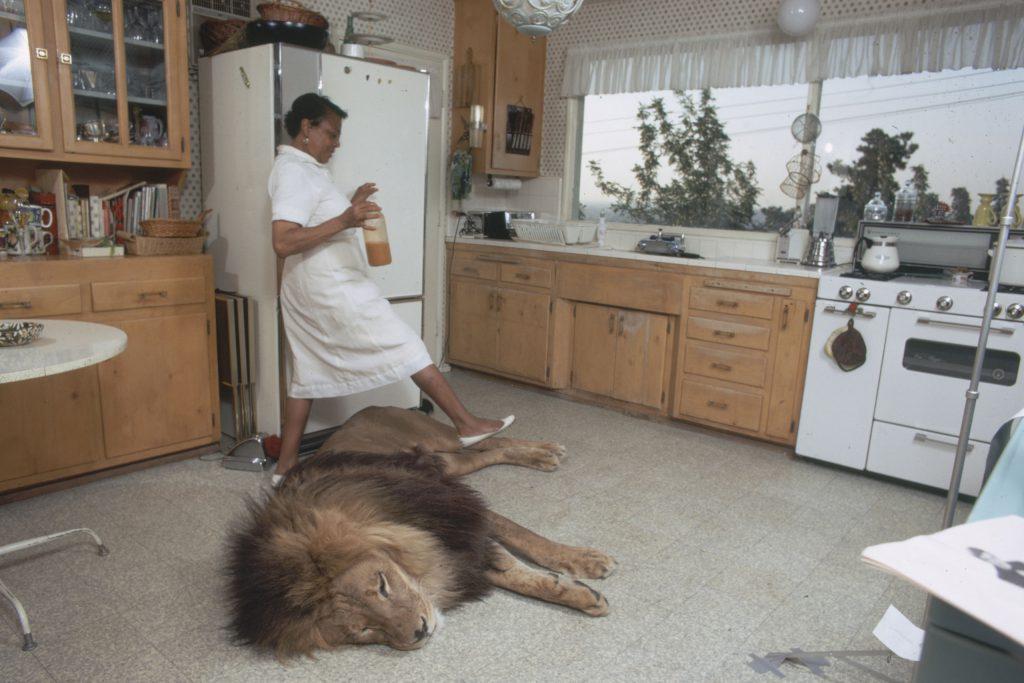 Tippi Hedren: Oh, Don't Mind Our Pet Lion