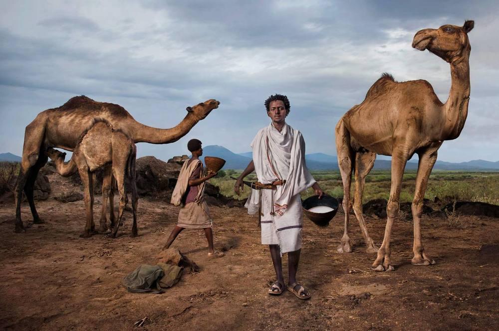 camel milk - slow food - girl gone authenticcamel milk - slow food - girl gone authentic